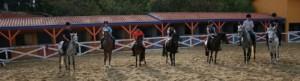 pony007b